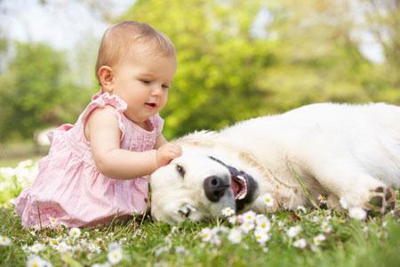 Домашние животные защищают детей от тревожного расстройства