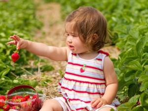 Пестициды могут стать причиной развития аутизма