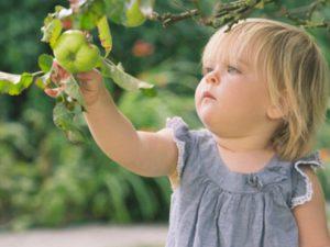 Яблочный сок поможет при гастроэнтерите у детей