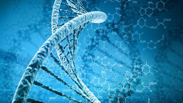 Ученые выявили мутацию, вызывающую задержку развития у детей