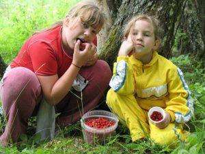 Дети летом: отравление ребёнка ядовитыми растениями и ягодами
