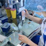 Какие задачи призвана решать репродуктивная медицина?