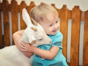 Контактный зоопарк – здоровью души и тела