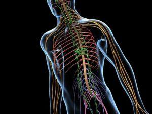 Симптомы заболеваний нервной системы