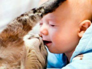 Токсокары. Симптомы у детей, диагностика и лечение