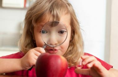Как развивать в ребенке любознательность