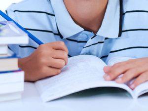Бесплатное и льготное питание в школе: порядок оформления