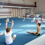 Эксперт: «Основным средством физического воспитания в школе становится гимнастика»