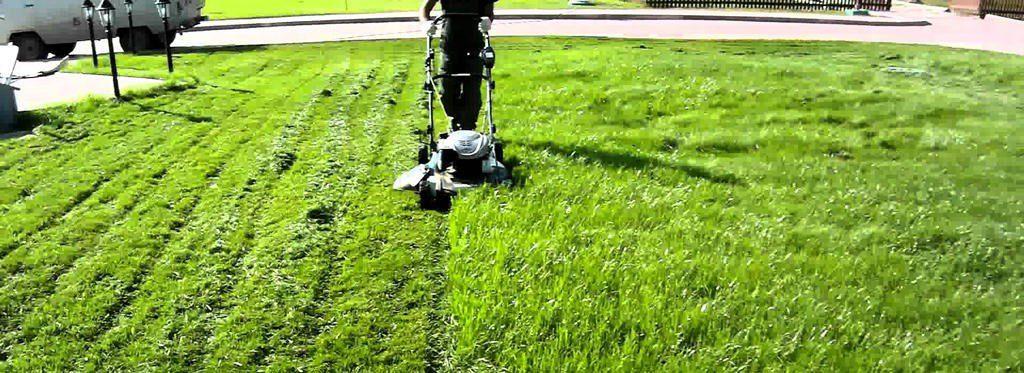 Лето на старте: обзор газонокосилок