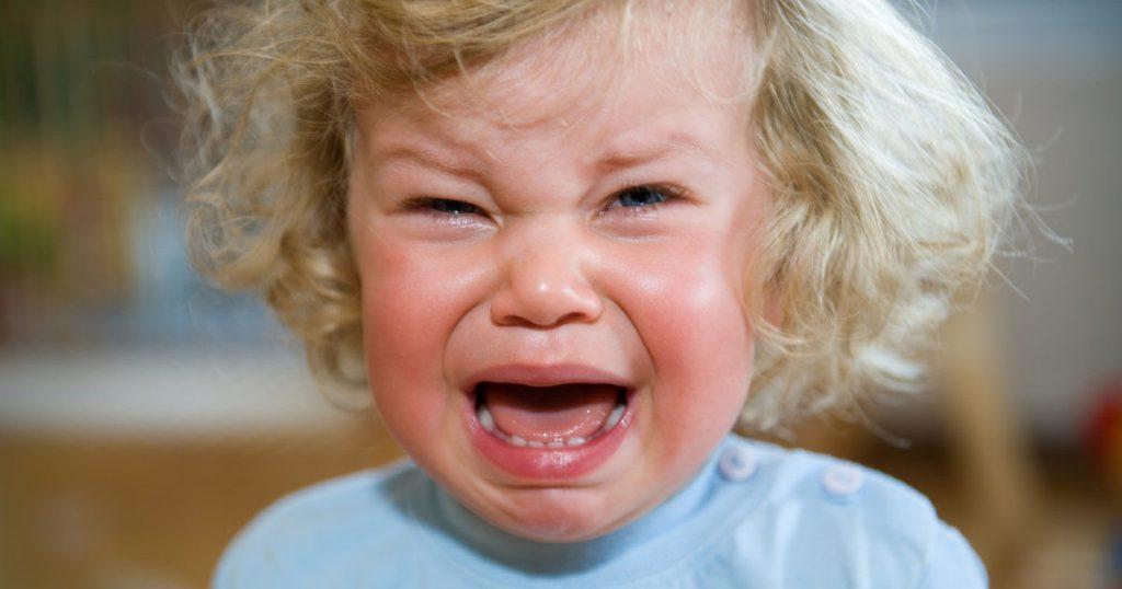 Истерики у ребенка 2 лет