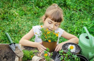 Как приучить детей выращивать и употреблять овощи