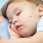 Как уберечь сон ребёнка летом?