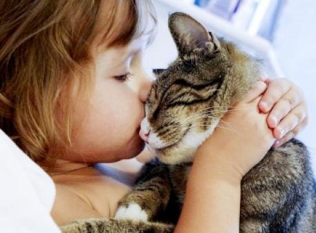 Ребенок и кошка: правила поведения